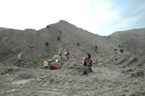 Geschichte der Kalkmergelgruben von Höver und Misburg bei Hannover @ GSUB Raum 0180 | Bremen | Bremen | Deutschland